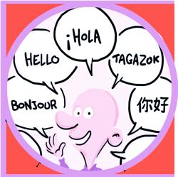 option traduction vidéo