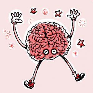 cerveau fun
