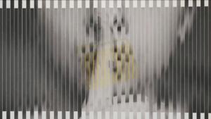 Video_LeMarcheGris-Image